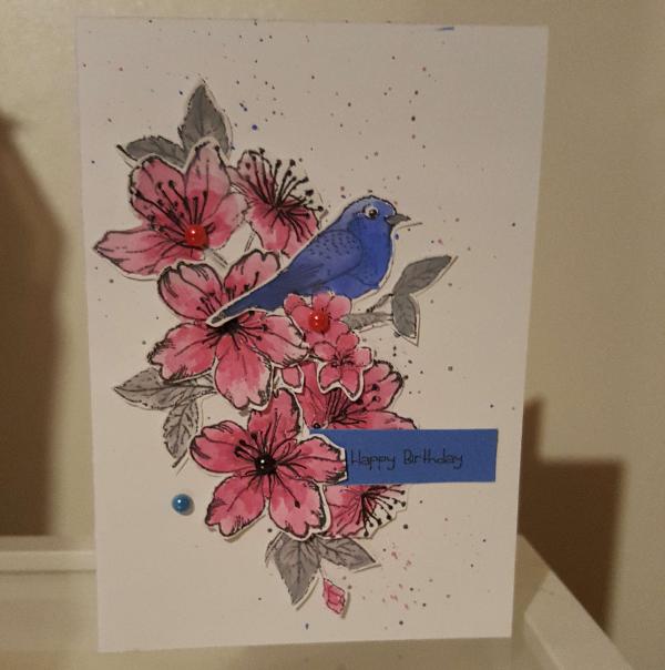 bluebird rose
