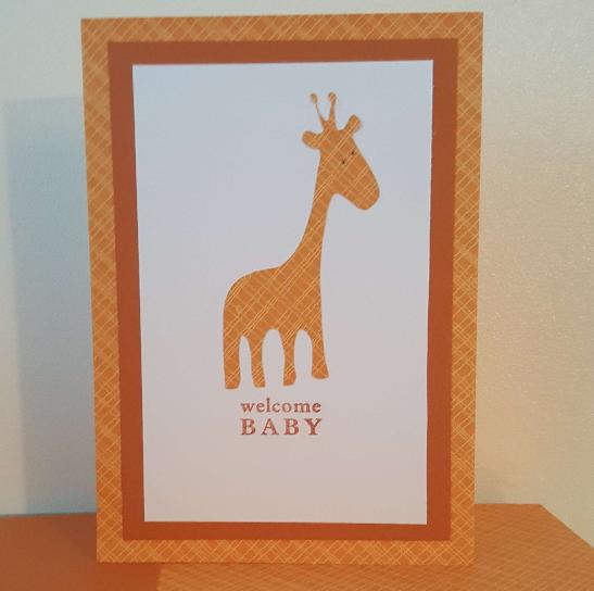 new baby giraffe